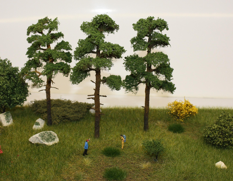 Деревья и кустарники своими руками